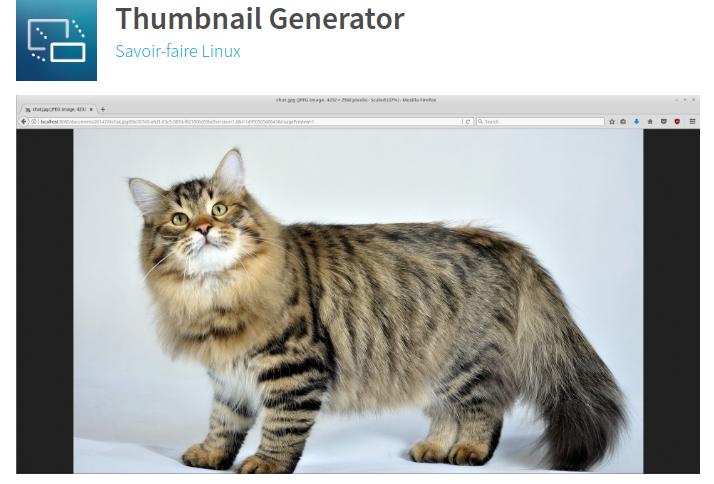 Maîtriser la génération de thumbnails avec Liferay DXP
